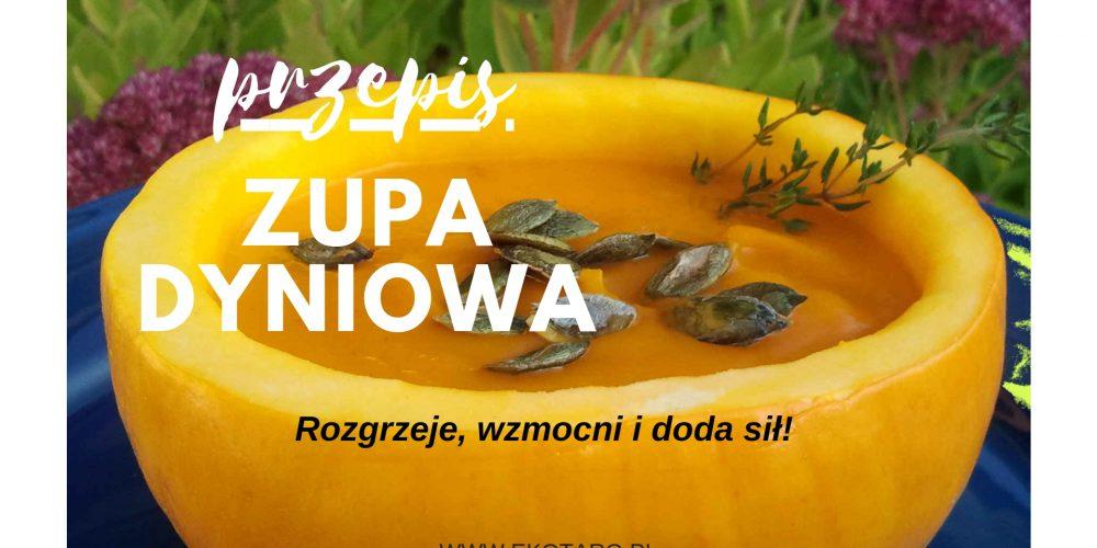 ZUPA_DYNIOWA_przepis
